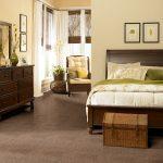 Shaw Carpet Optimum Room Scene