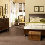 Shaw Carpet Optimum Room Scene
